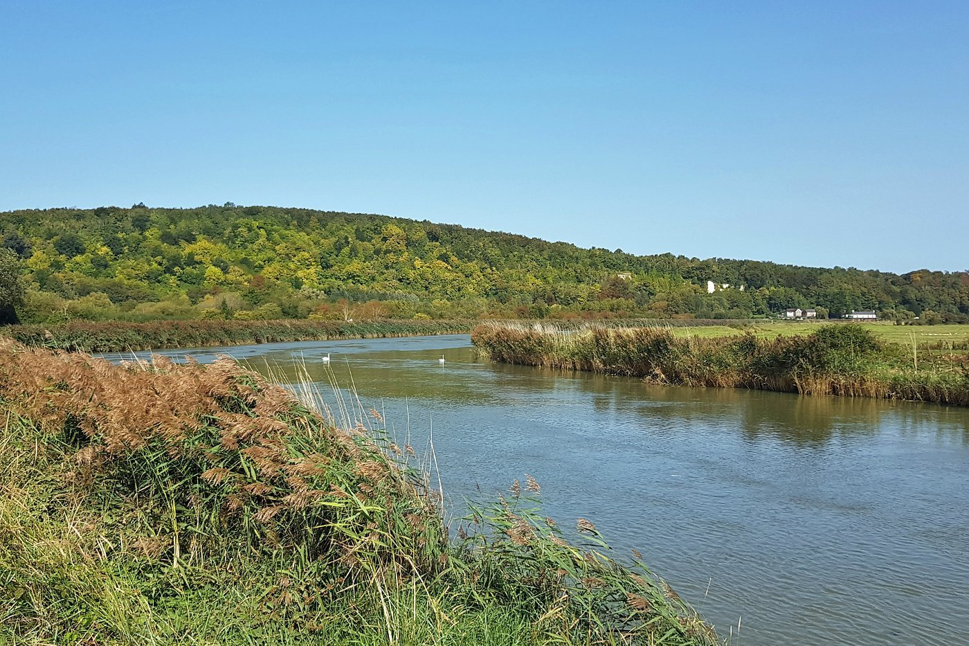 The River Arun, Arundel